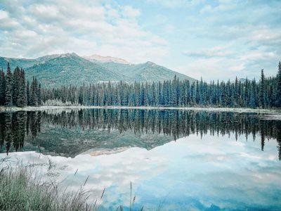 DENALI 2-3 Day Itinerary: See the Best of Denali, AK